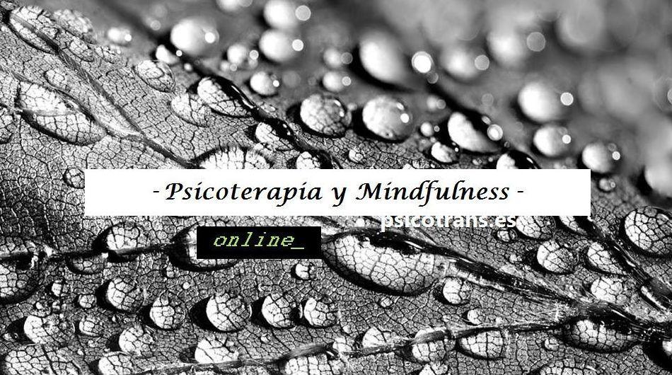 Foto 4 de Psicología en Majadahonda | Psicotrans