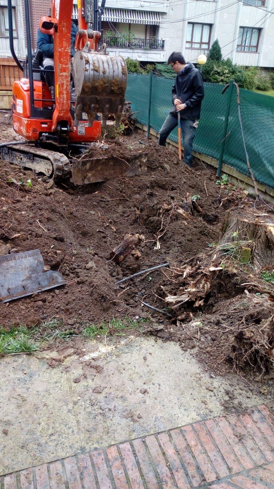 Diseño y mantenimiento de jardines en Vizcaya