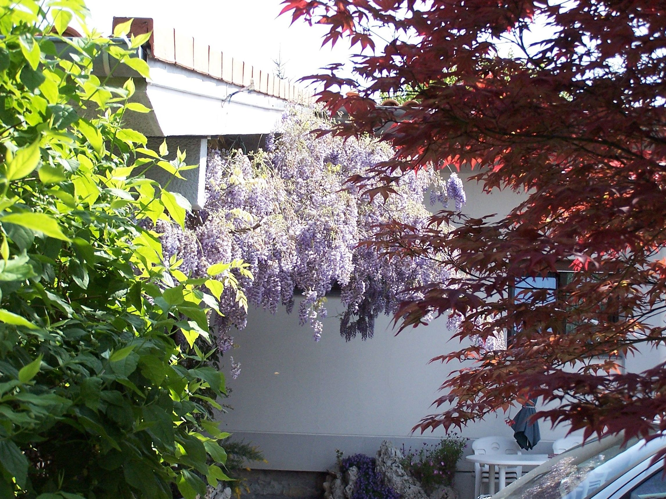 Mantenimiento de jardines en Urdúliz, Bizkaia