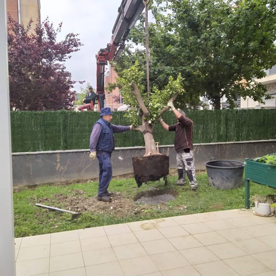Construcción de jardines Uribe