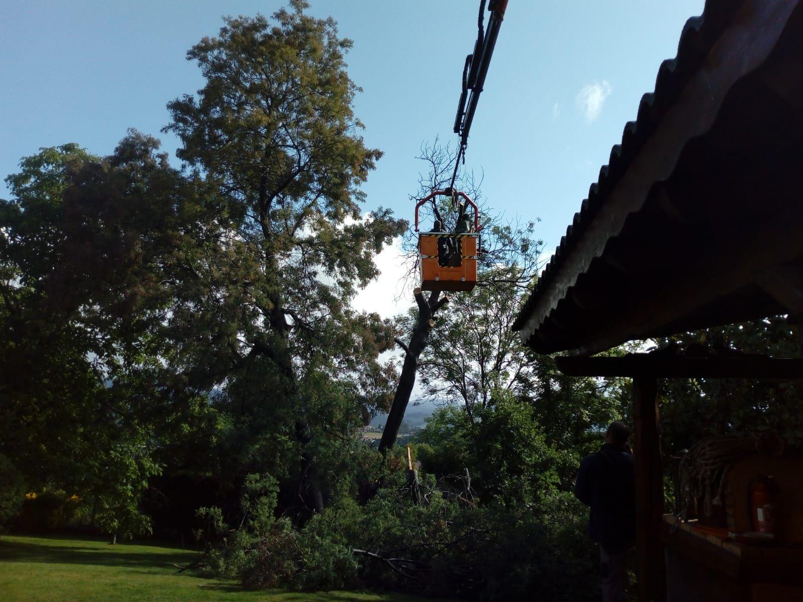 Construcción de jardines Sopelana