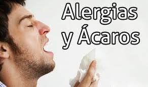 Desinfección: ¿Qué hacemos? de Andaluza de Fumigación s.l.