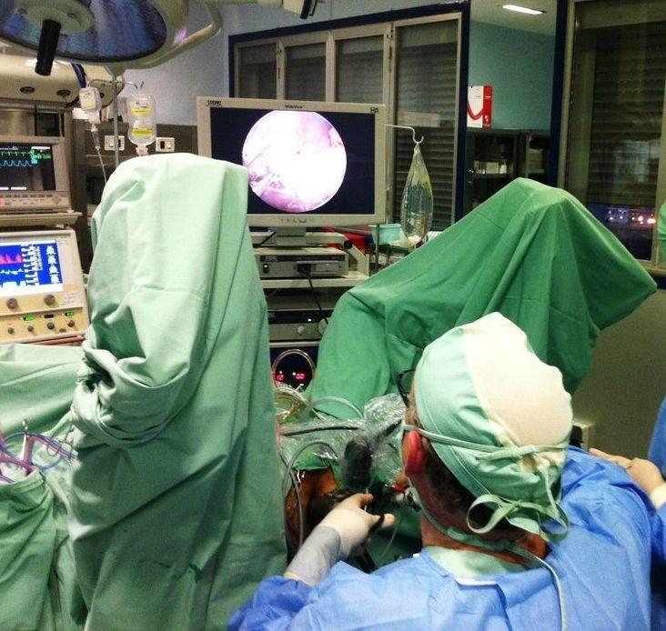 Cirugía laparoscópica: Tratamientos de Dr. Alberto Parajó Calvo (C-32-001094)