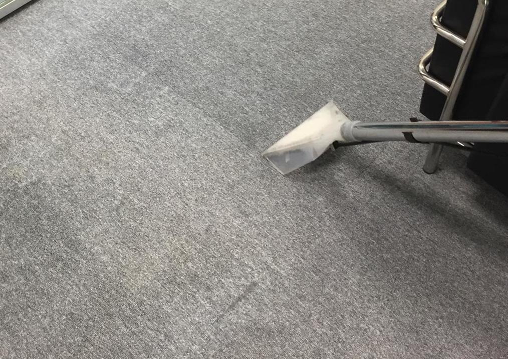Limpieza de moquetas y alfombras