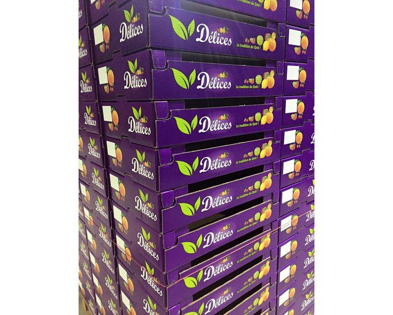 Cajas de cartón para productos hortofrutícolas