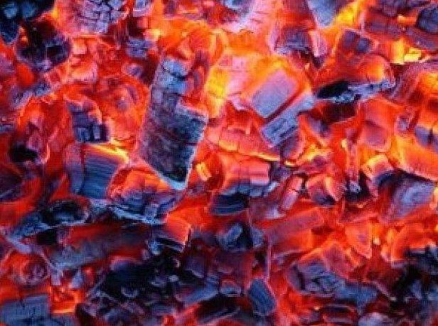 Carbón hostelería: Productos y servicios de elcarbonero.es