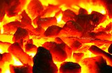 Carbón de encina: Productos y servicios de elcarbonero.es