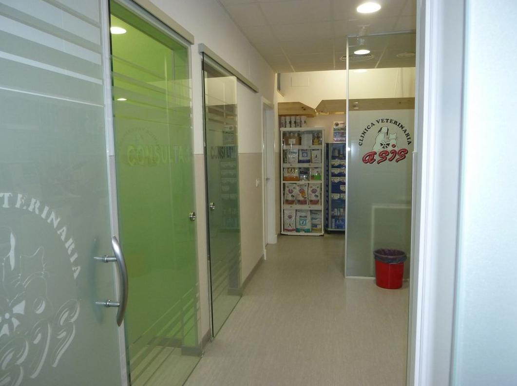 Clinica Veterinaria Asis