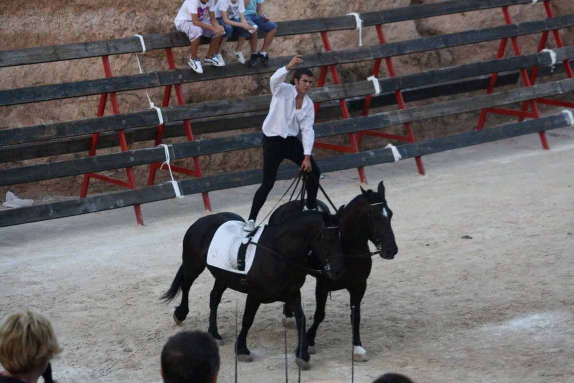 Espectáculos con caballos en la Comunidad Valenciana