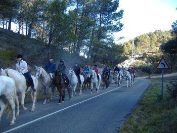Actividades con caballos en la Comunidad Valenciana
