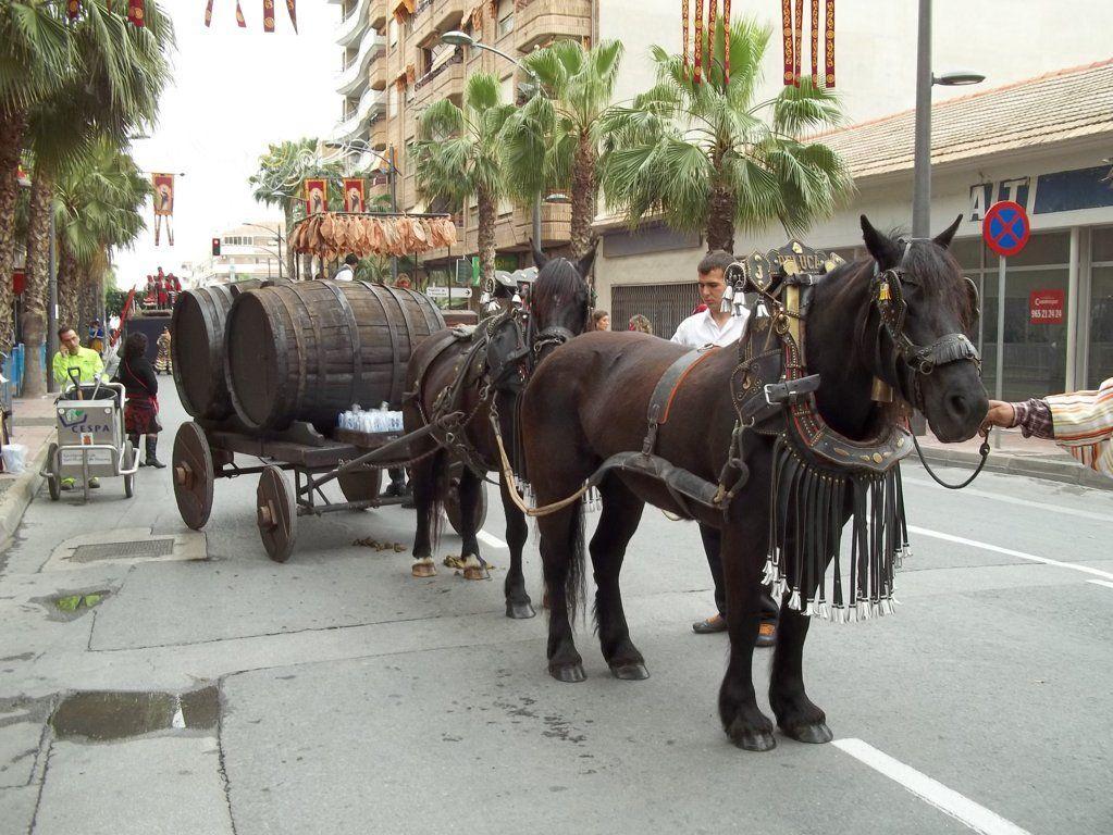 Alquiler de carruajes de caballos en la Comunidad Valenciana