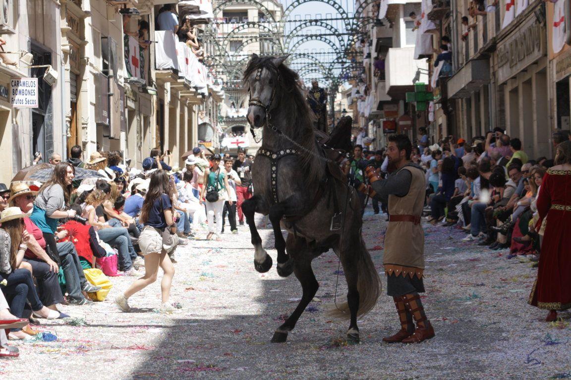 Alquiler de caballos para fiestas en la Comunidad Valenciana