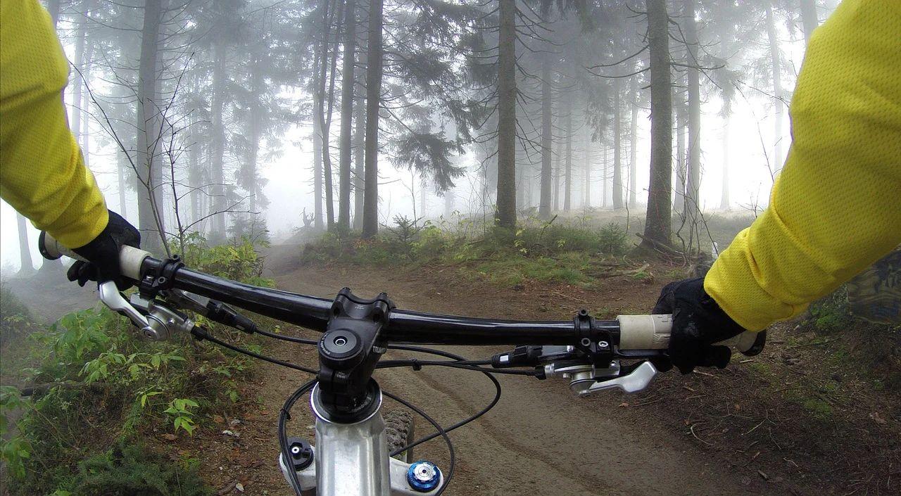 Mountain Bike: Catálogo de Sancho García