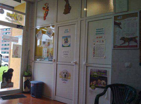 Foto 18 de Veterinarios urgencias 24horas en Oviedo | Centro Veterinario Ícaro