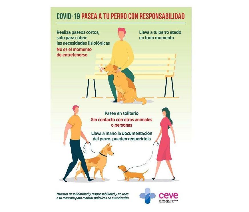 Covid-19 | Pasea a tu perro con responsabilidad