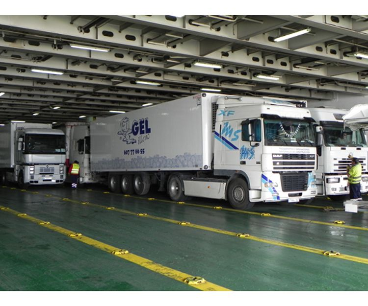 Flota de vehículos de transporte frigorífico