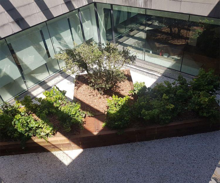 Diseño de jardines en Cabrera de Mar, Barcelona