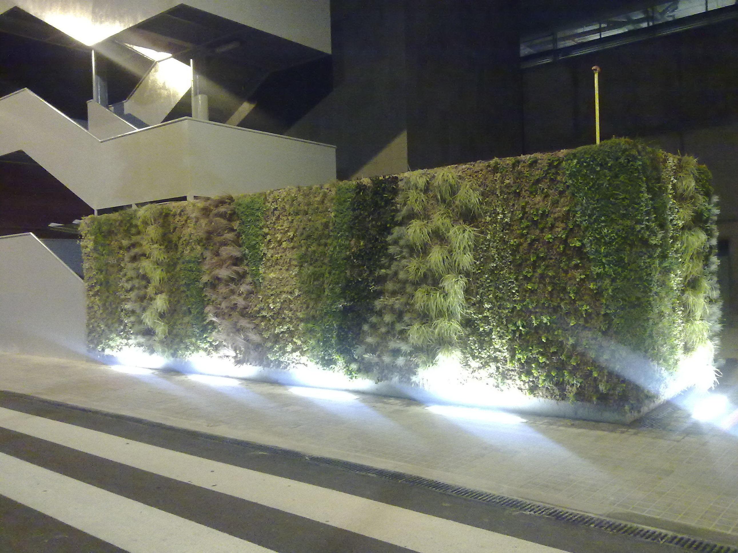 Muro vegetal con iluminación