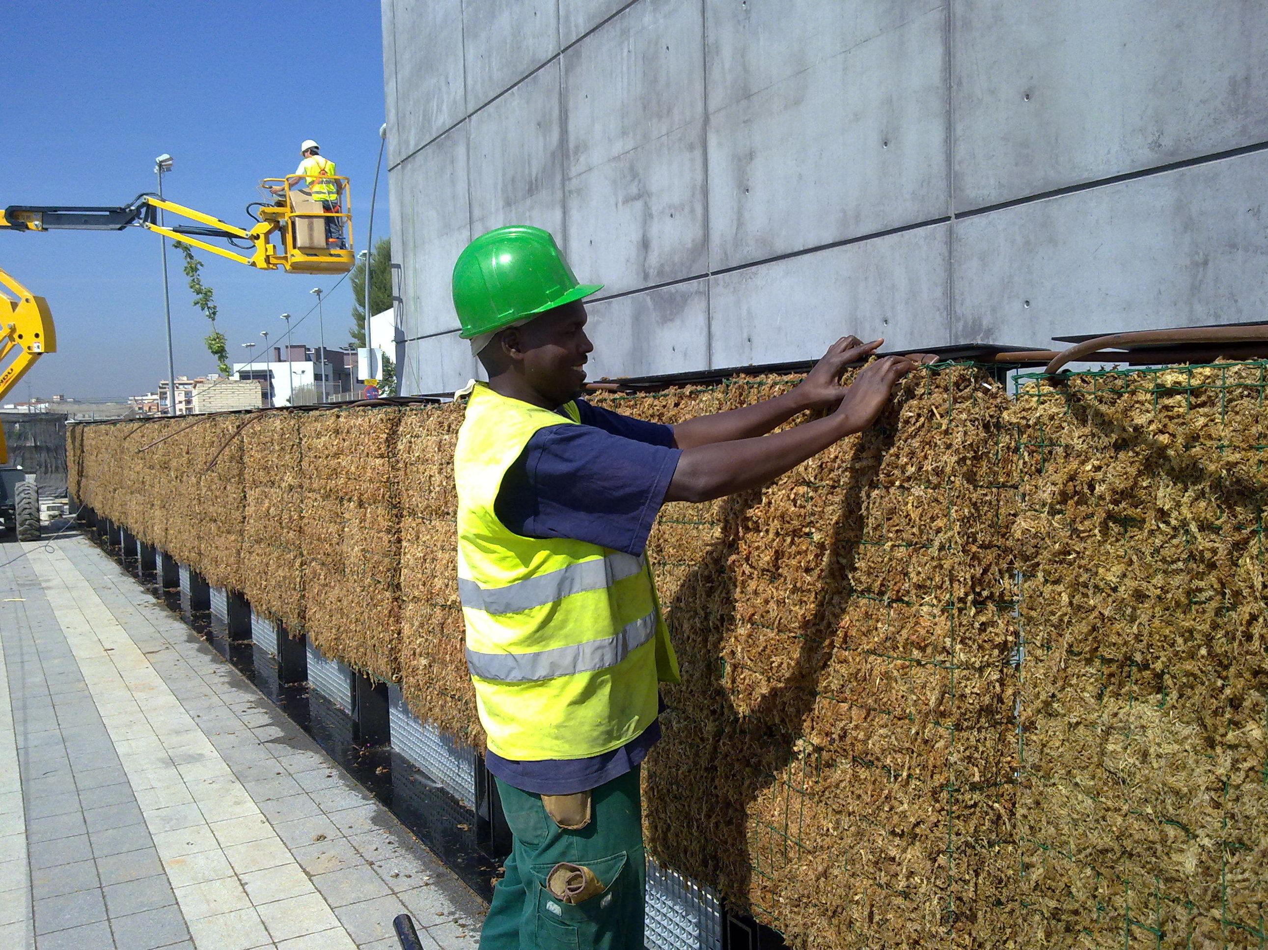 Trabajos realizados para jardín vertical