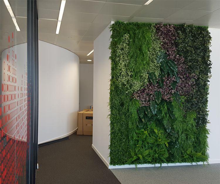 Mantenimiento de jardines verticales en Cabrera de Mar, Barcelona