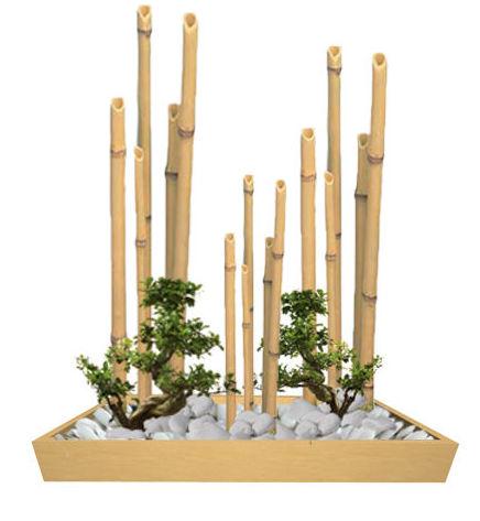 Japonés Bambú