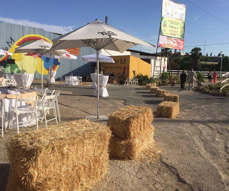 Fiestas temáticas en Sevilla
