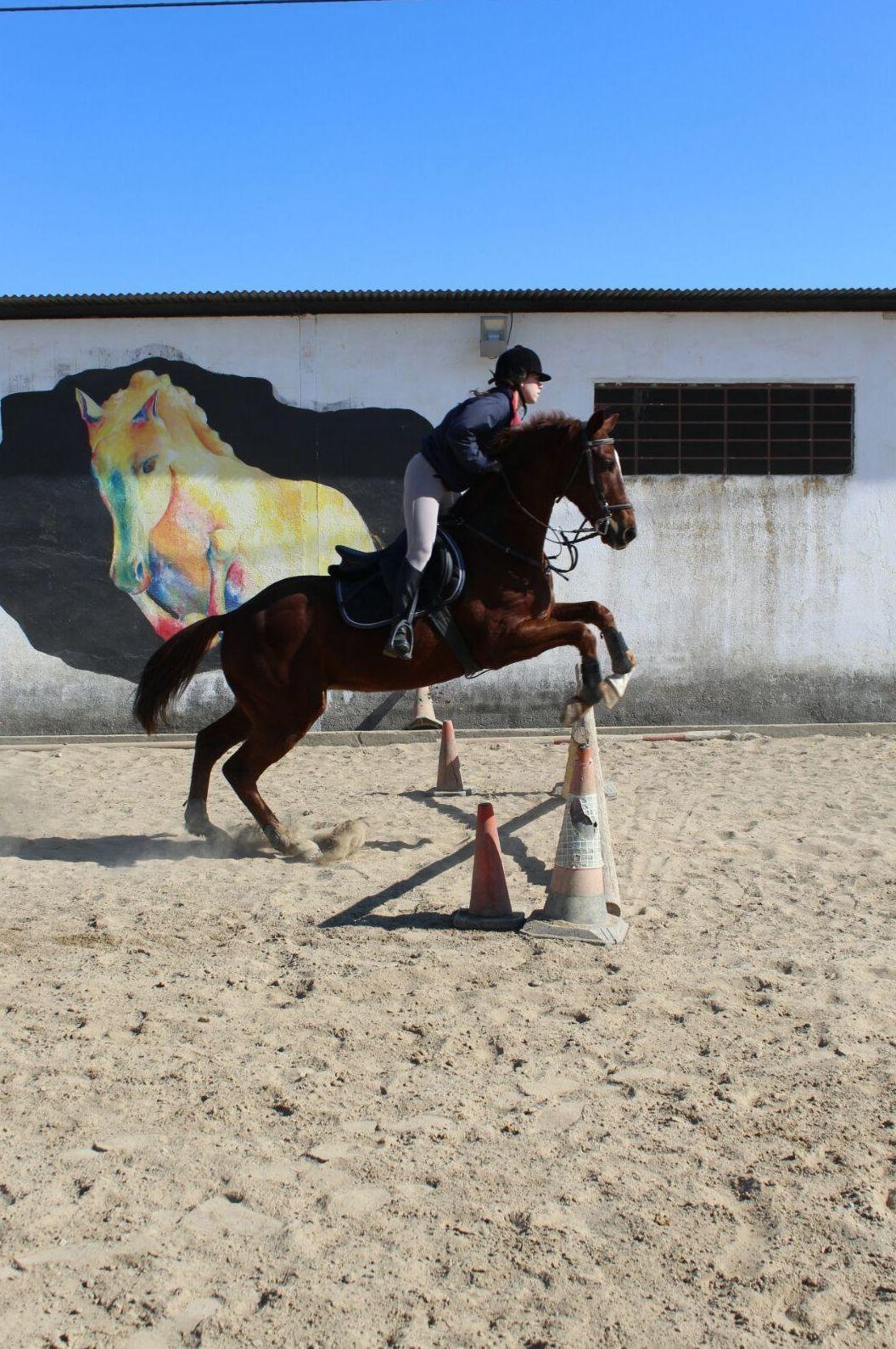 Salto de obstáculos Sevilla