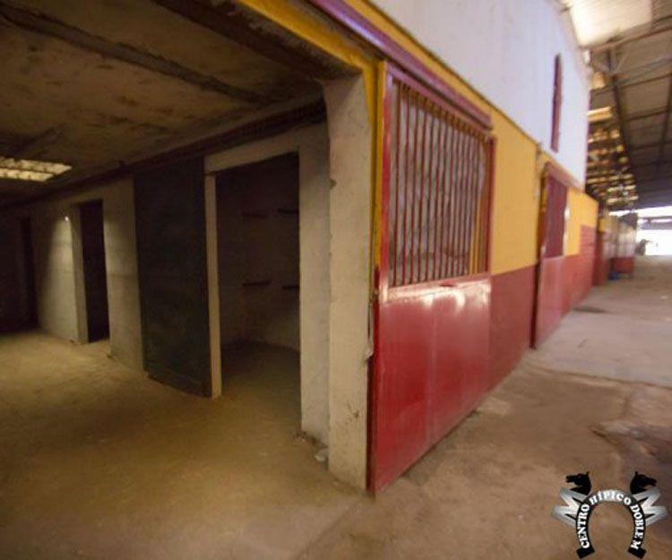 Instalaciones de nuestro centro de equitación en Sevilla