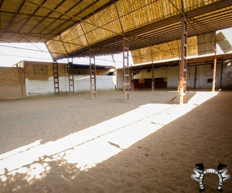 Clases de iniciación a la equitación en Sevilla