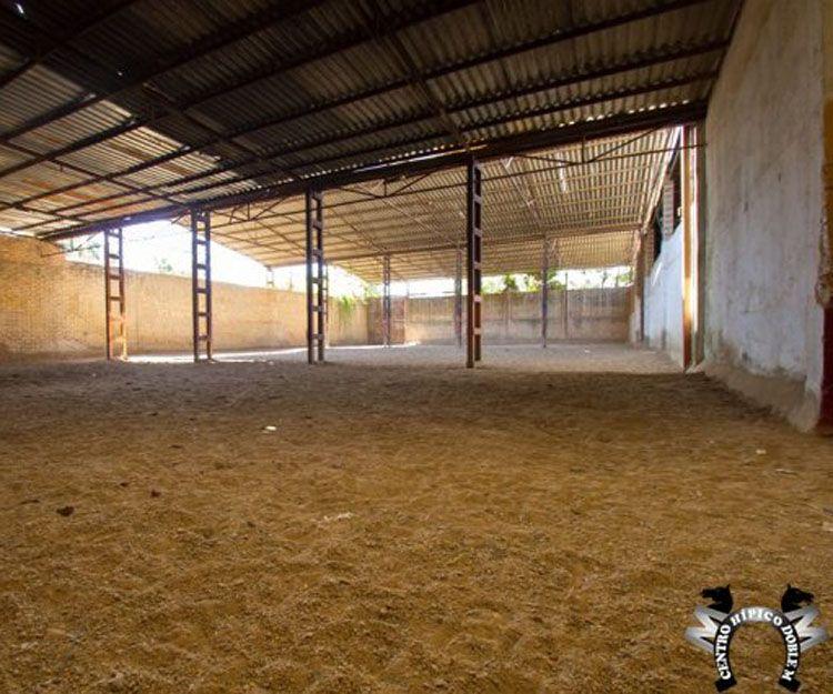 Instalaciones de nuestro centro hípico en Sevilla