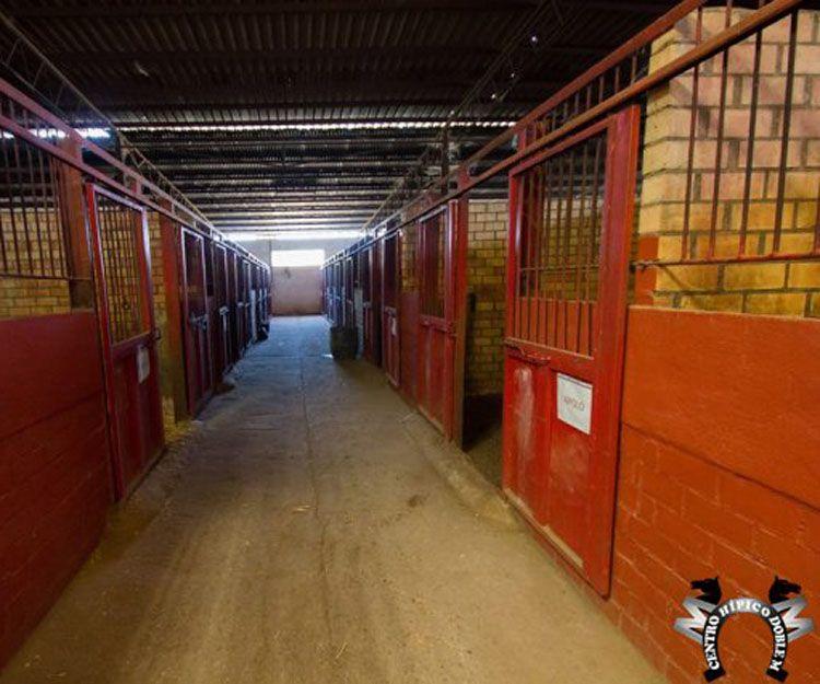 Caballerizas para nuestros caballos en Sevilla
