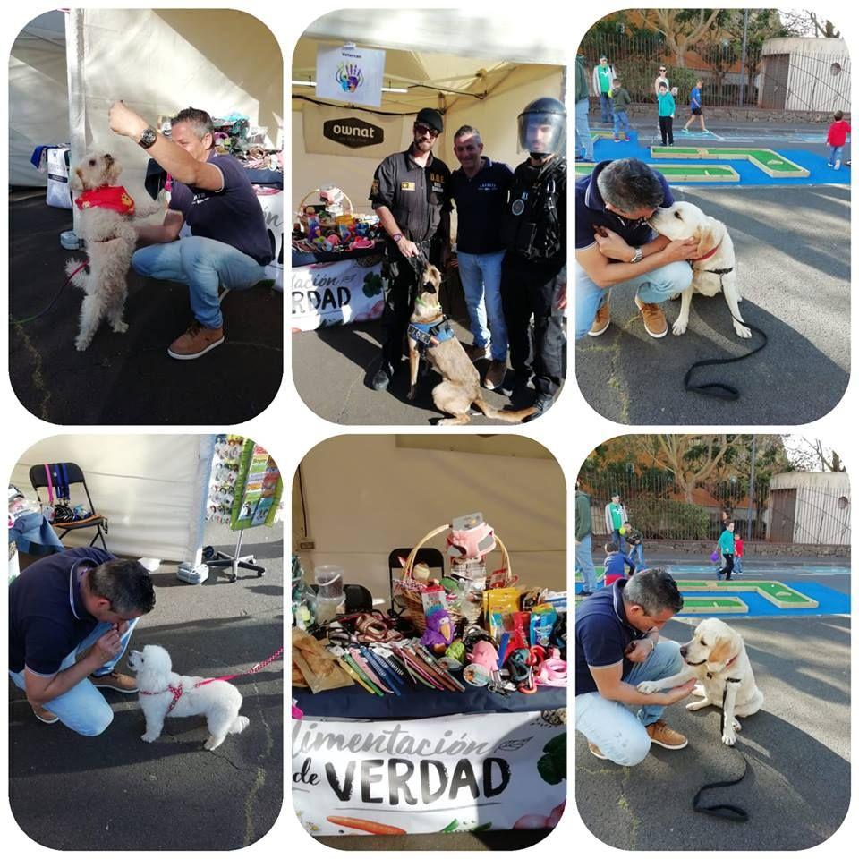 Foto 23 de Veterinarios en  | Vetercan