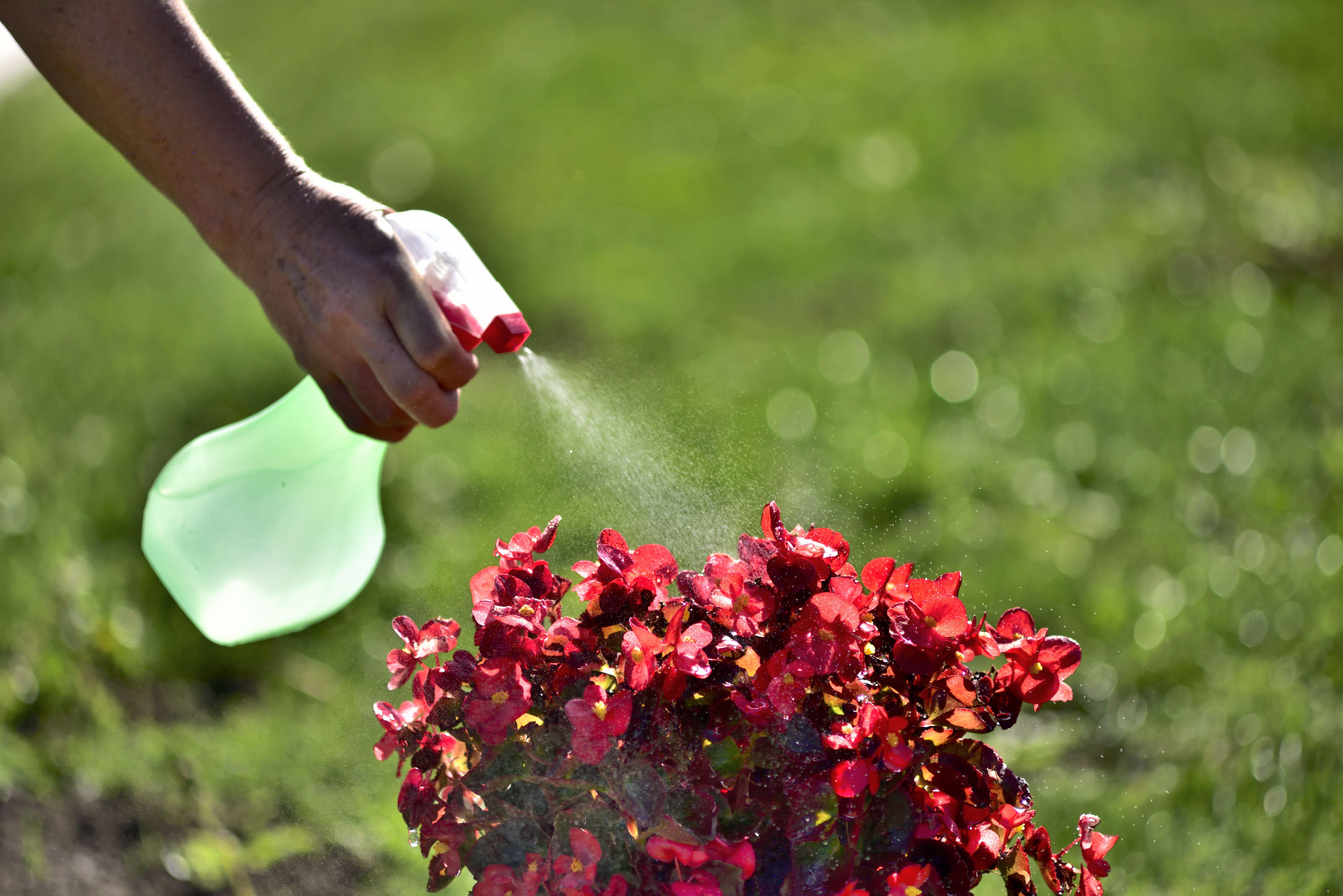 Insecticidas: Productos de Corbimat