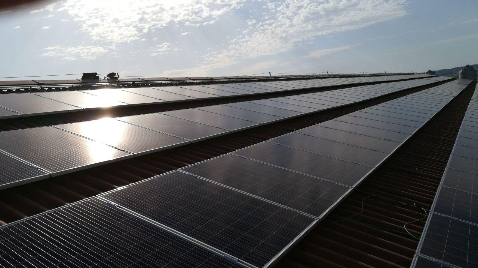 Energías renovables, instalación de fotovoltaica para autoconsumo en granja Grupo Obanos Navarra
