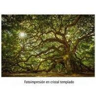 Fotoimpresión de paisaje