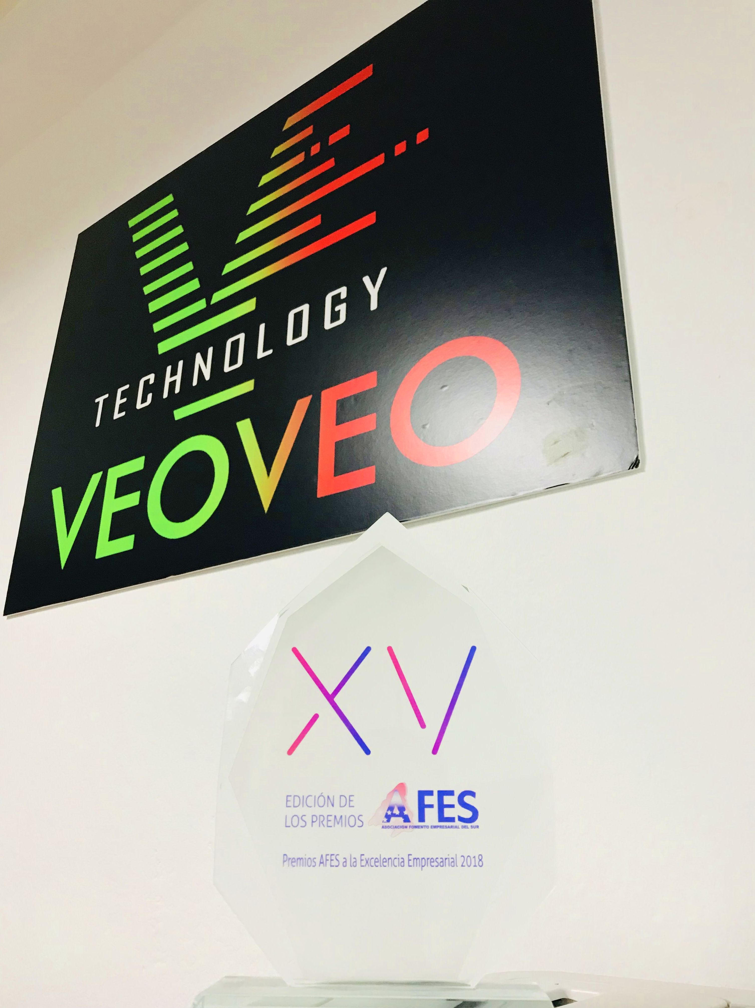 Premio AFES a VeoVeo Technology