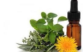 Medicina alternativa: Servicios y ofertas de Clínica Veterinaria DContreras
