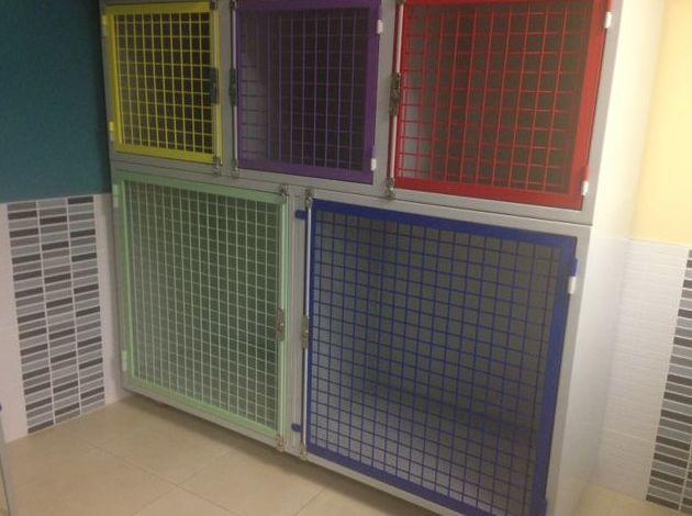 Clínica veterinaria dotada de modernas instalaciones en Puente de Vallecas