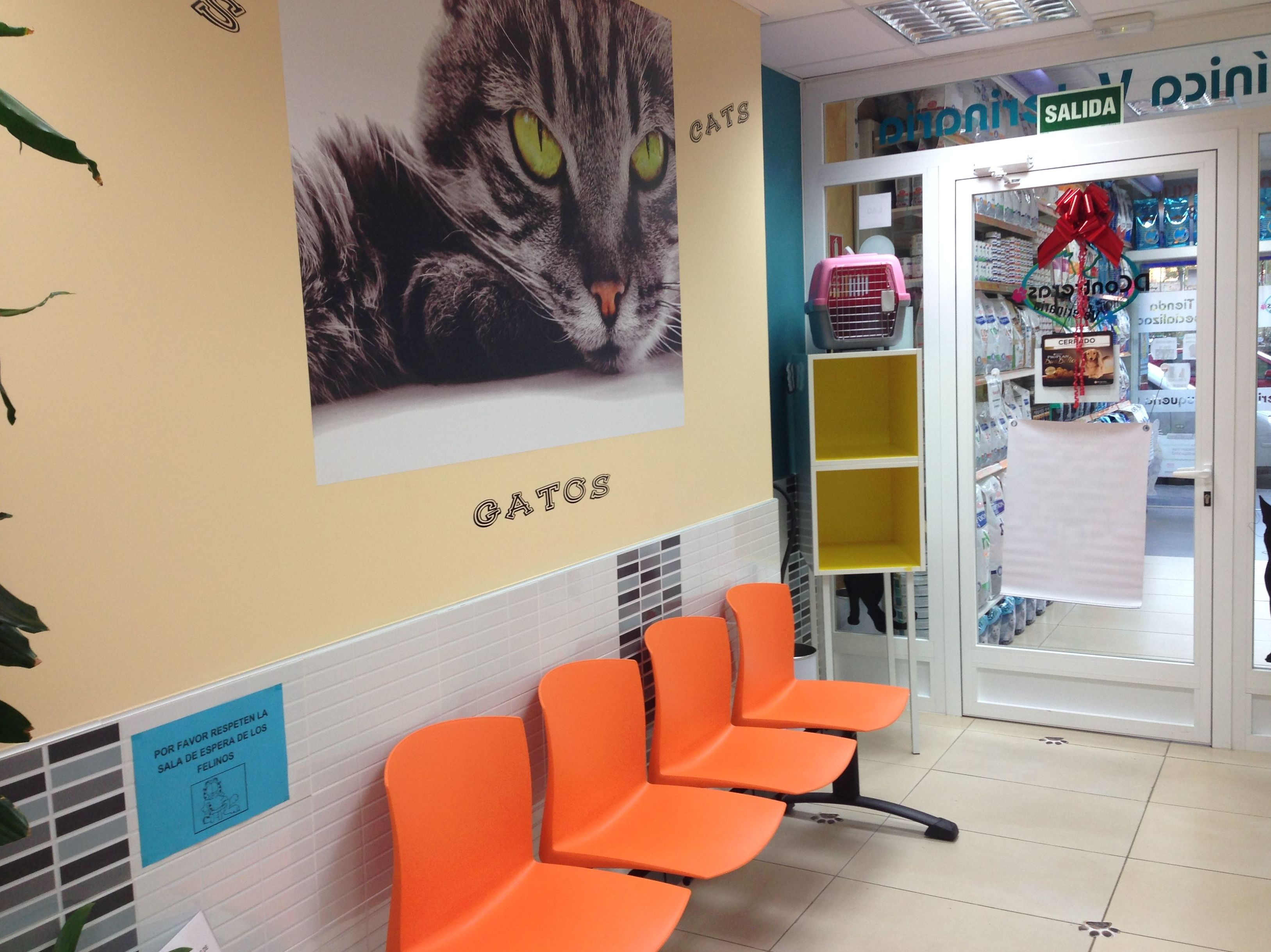 Sala de espera de gatos, separada de la de los perros