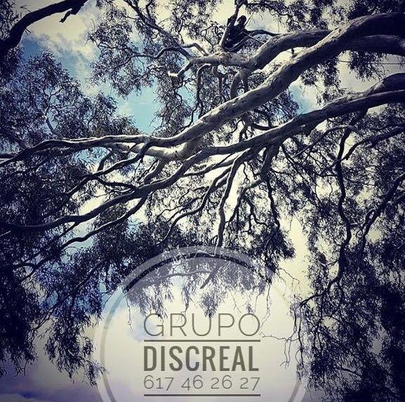 GRUPO DISCREAL - GIJÓN - ASTURIAS