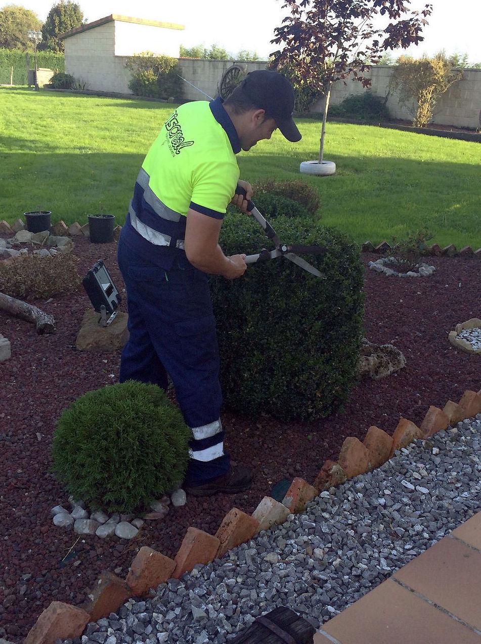 Diseño y mantenimiento de jardines en Asturias. Paisajismo