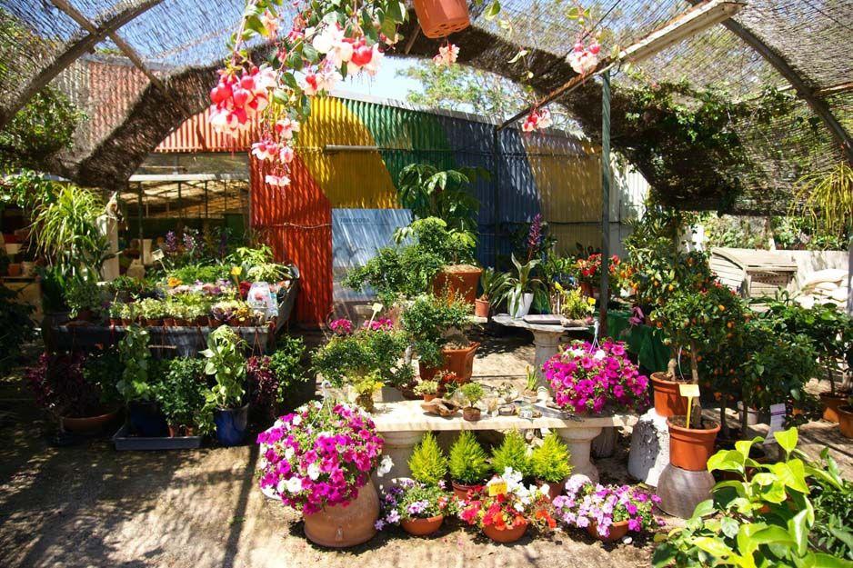 Viveros de jardinería en Cartagena