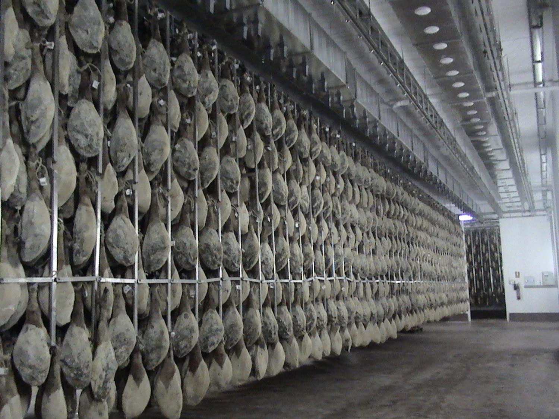 Raíles para secaderos: Servicios de Montajes Elices