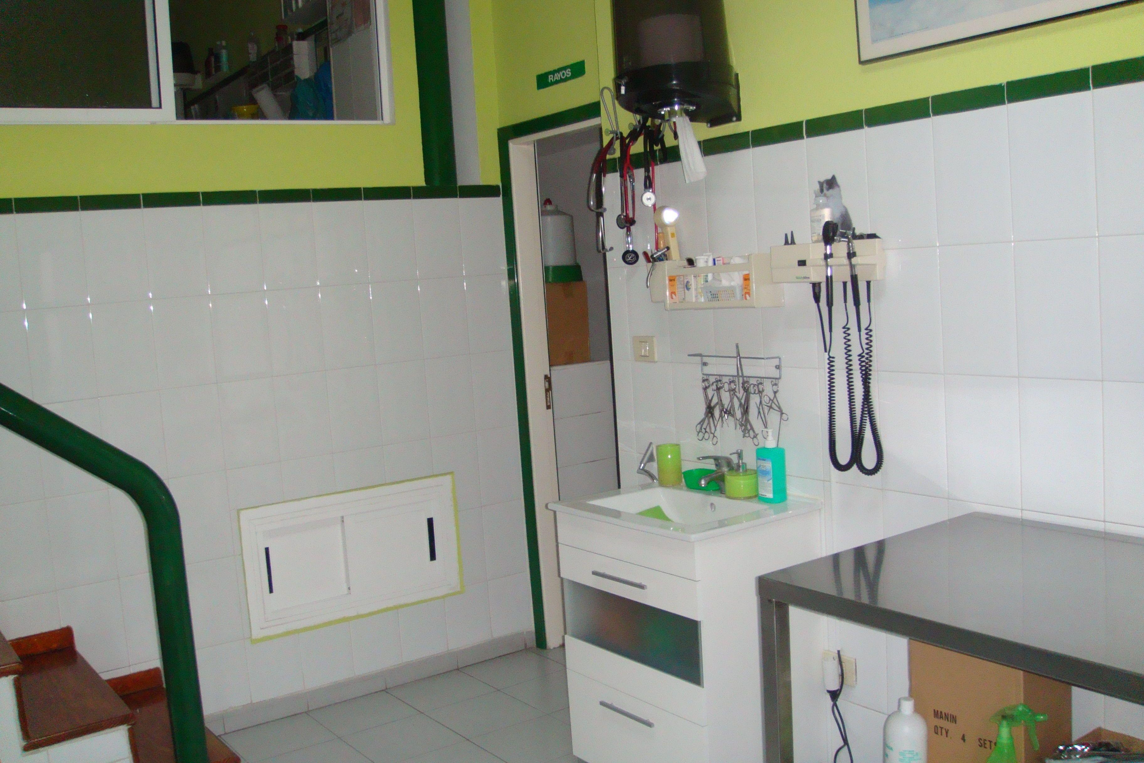 Clínica veterinaria en Santa Cruz de Tenerife