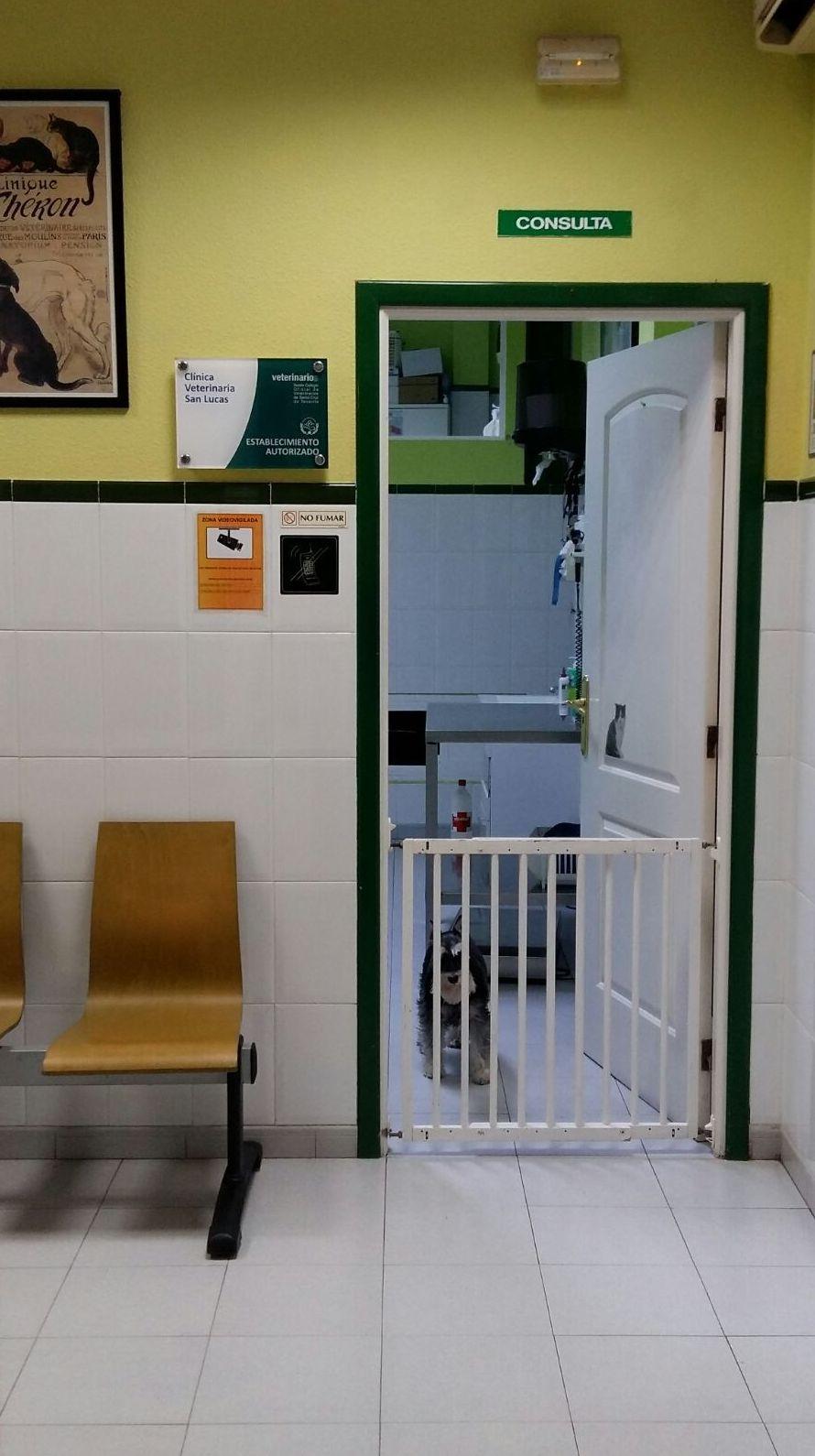 Entrada a la consulta desde la sala de espera
