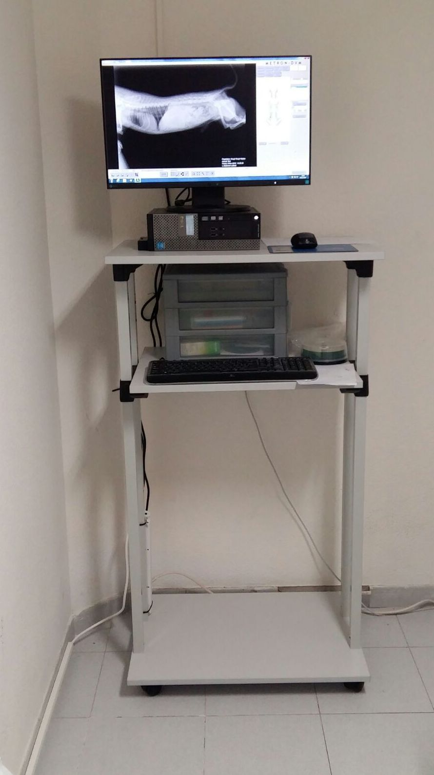 Radiología digital directa