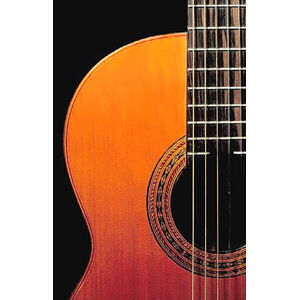 Guitarras: Instrumentos musicales de Galería Musical Arévalo