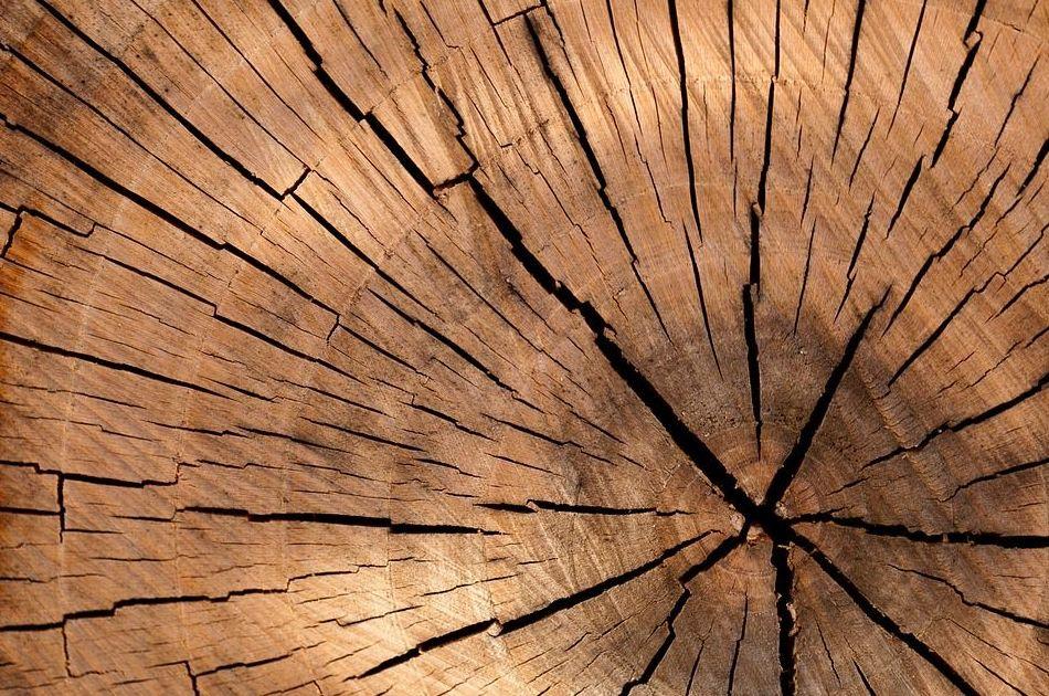 Jaulas de madera en Navarra