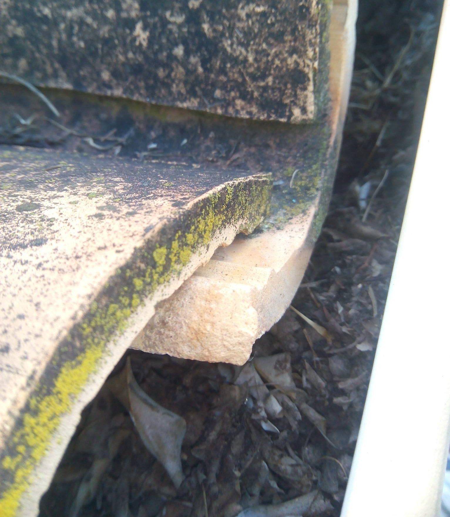 Limpieza de canalones: Servicios de Vicente Canalones