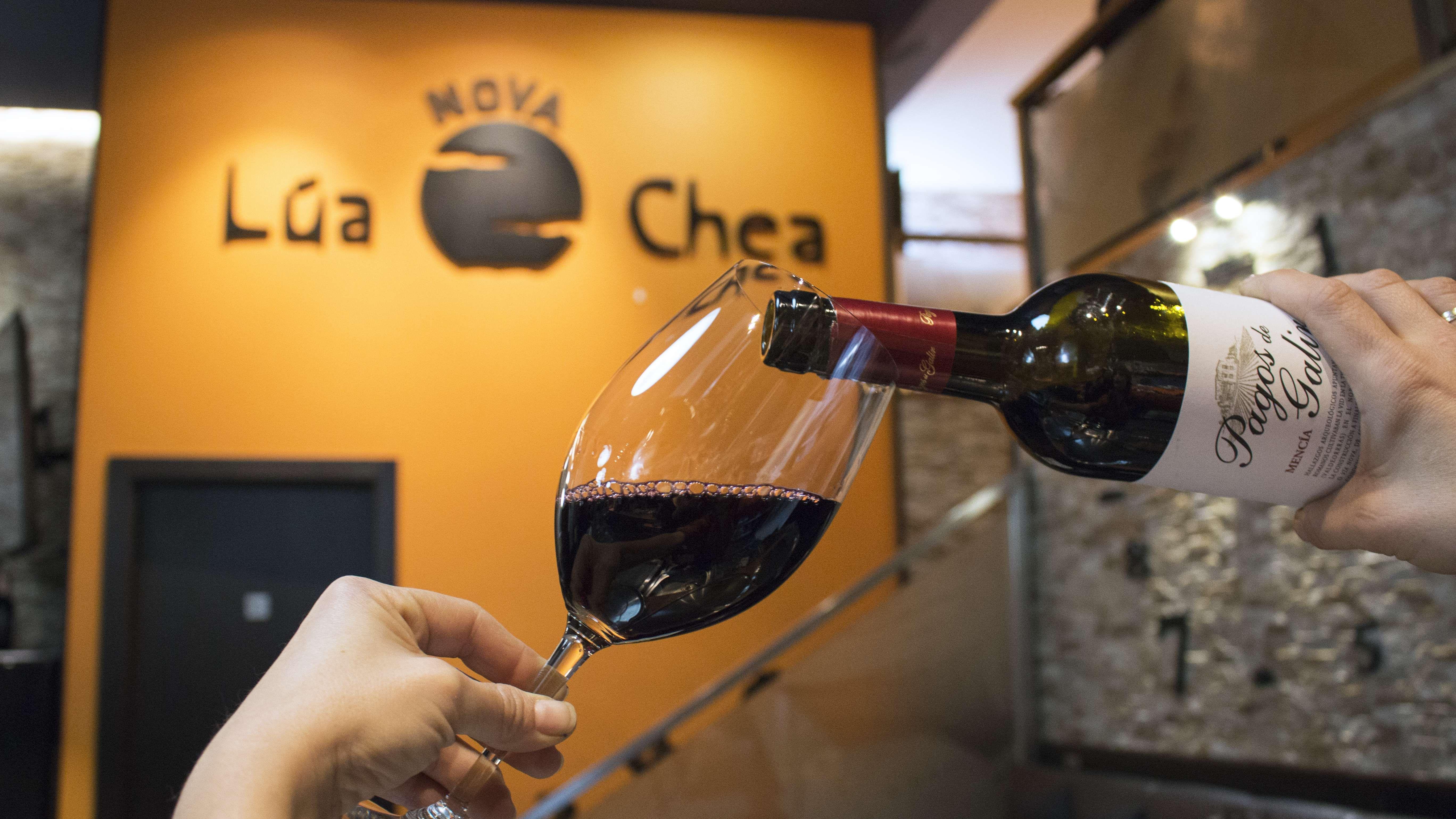 Bodega de vinos selectos